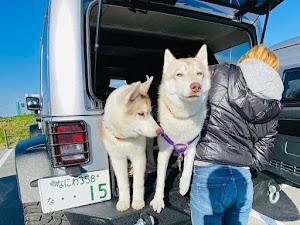 ラングラーアンリミテッド JK36Lのカスタム事例画像 ケイ(ハスキーとジープふぁみりー)さんの2020年03月09日22:14の投稿