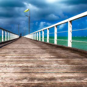 by Dwayne Flight - Buildings & Architecture Bridges & Suspended Structures (  )