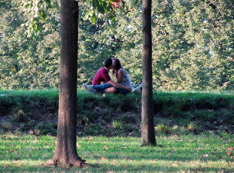 Un bacio fra gli alberi di Giorgio Lucca