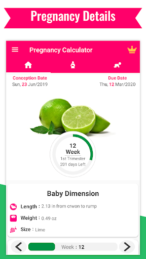 Download Pregnancy Calculator -Track Pregnancy Week by Week 22.26 2