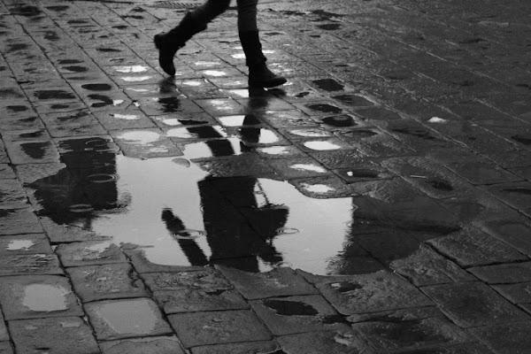 Rain effect di AleBarazzuoli