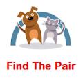 Find Pair