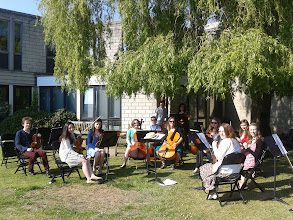 Photo: The University String Sinfonia performing under the trees on campus on day four of Summer Music Week.