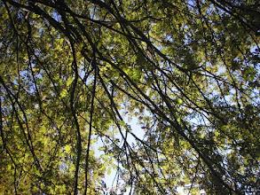 Photo: Krásný první říjen 2011