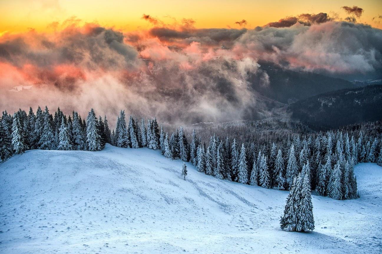 https://500px.com/photo/53531660/iarna-in-bucovina-by-dumitrescu-catalin