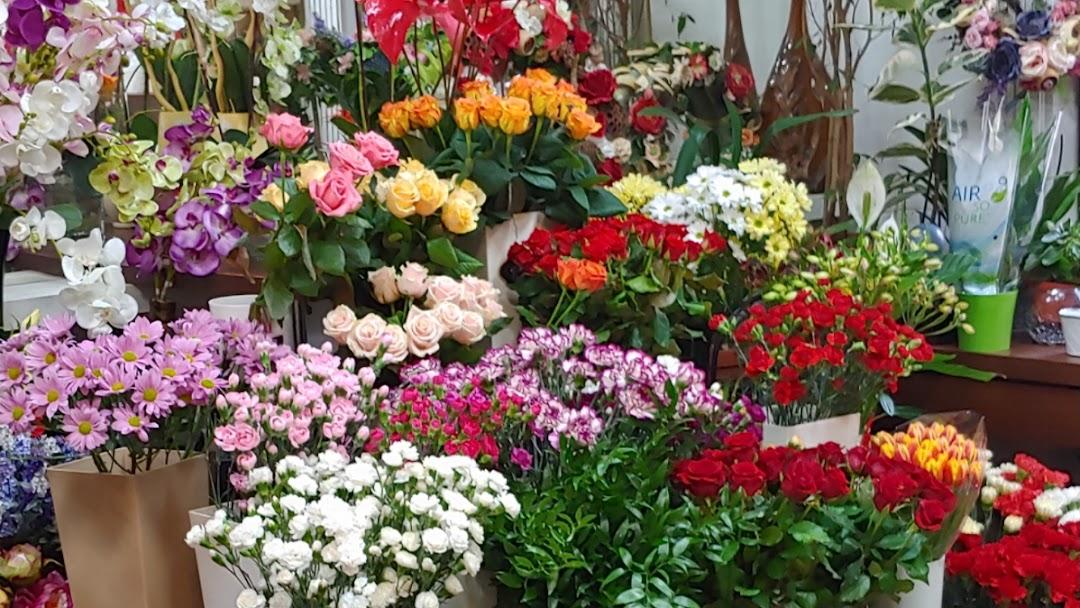 "「flower shop」的圖片搜尋結果"""