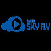 RADIO SKYFLY