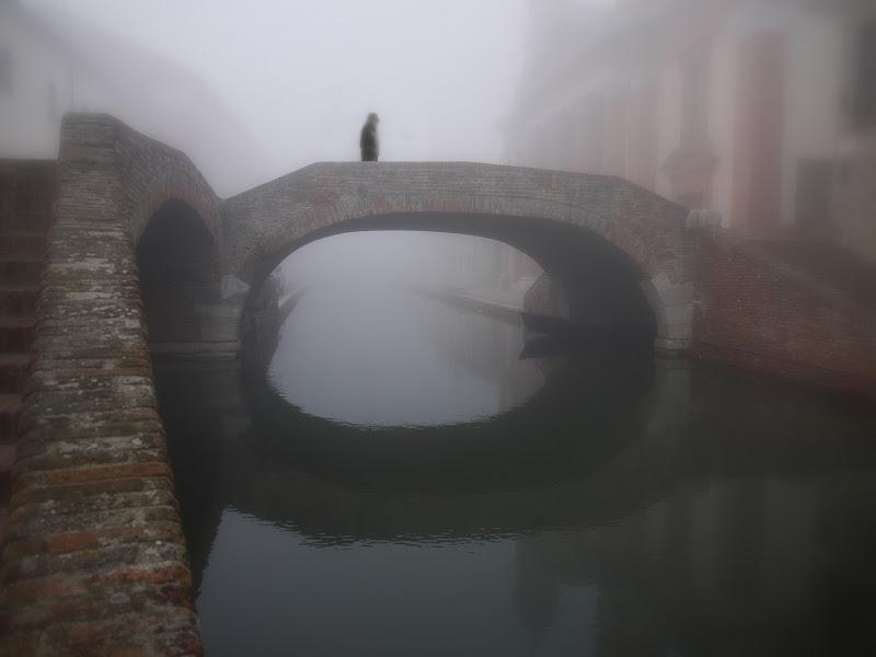 Il solitario. di Naldina Fornasari