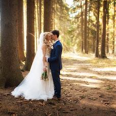 Wedding photographer Dmitriy Lisnyak (bigi). Photo of 20.01.2018