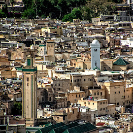 Fez by Richard Michael Lingo - City,  Street & Park  Historic Districts ( historic district, city, fez, neighborhood, morocco )