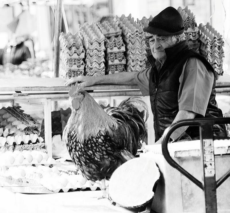 venditori di uova di AGATA