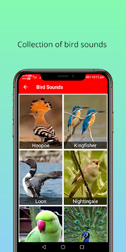 150 Animal Sounds 310 screenshots 3