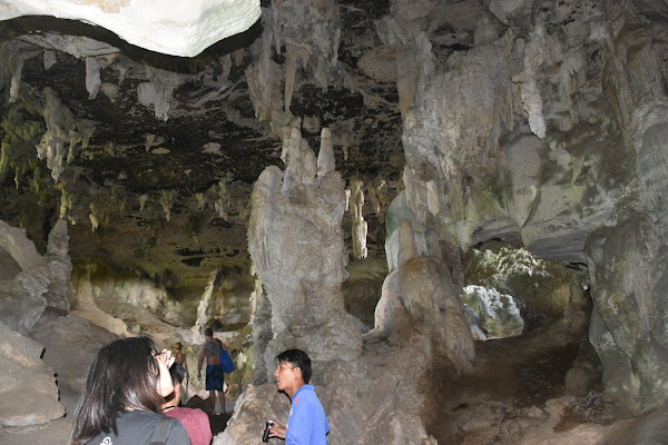 Get explanations about the history of the cave