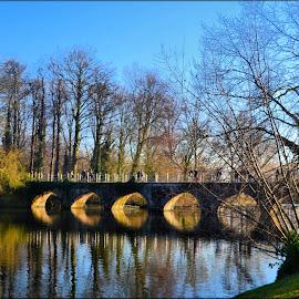 bridge over still waters by Nic Scott - Buildings & Architecture Bridges & Suspended Structures ( reflections, brugge, bridge, water )