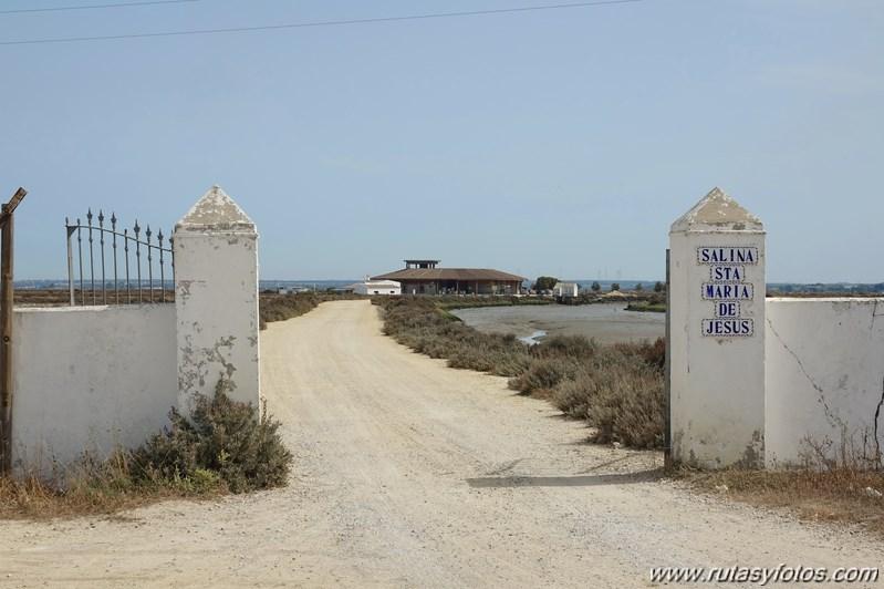 Ruta de los Esteros (Chiclana)