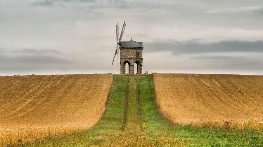 chesterston stripe by Alan Ranger - Landscapes Prairies, Meadows & Fields ( algenon, sony, warwickshire, www.alanranger.com, cheserton, landscape, alan ranger, chesterton windmill )
