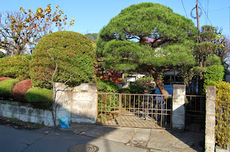 Photo: Petit jardin