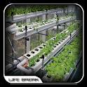 Hydroponic Garden Design icon