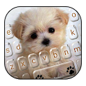 Innocent Puppy Keyboard Theme icon