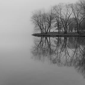 Solitude by Brad Bellisle - Black & White Landscapes (  )