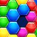 Block Hexagon! Hexa Puzzles icon