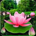 Flower Live Wallpaper 3D icon