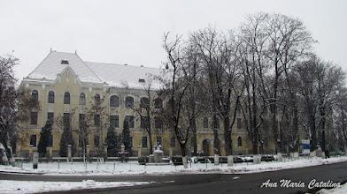 """Photo: Str. Dr. Ioan Ratiu, Nr.111 - Colegiul National """"Mihai Viteazul"""" - Bustul lui Teodor Murasanu si bustul lui Pabel Dam - (2012.12.21)"""