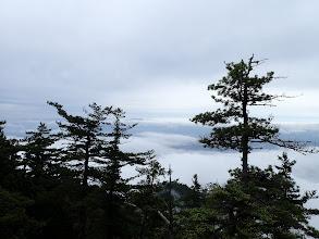 奥に見えるのは浅間山か?(左奥に四阿山)