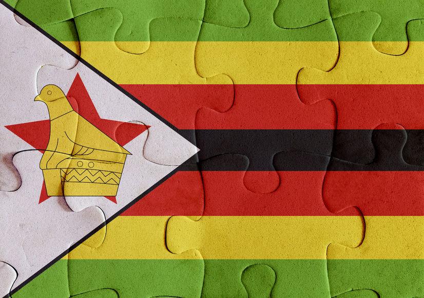 VN-gesant van die VN in Zimbabwe as dokter 'ontvoer', word betogings verbied