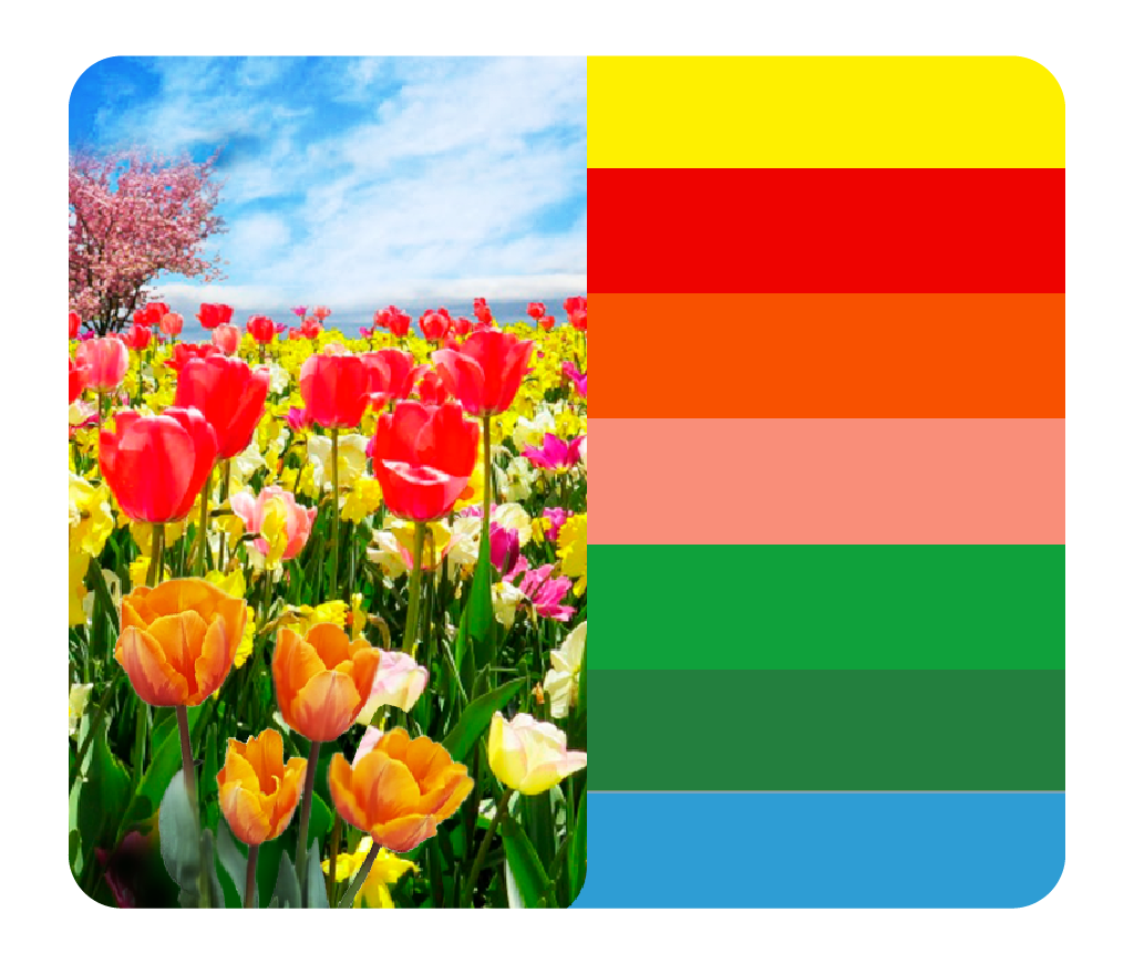 as cores da primavera intensa