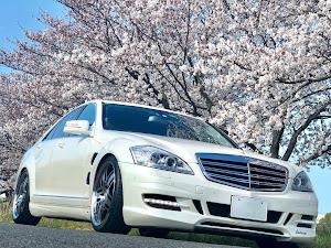 Sクラス W221のカスタム事例画像 銀蔵  specialists☆さんの2019年04月01日05:15の投稿