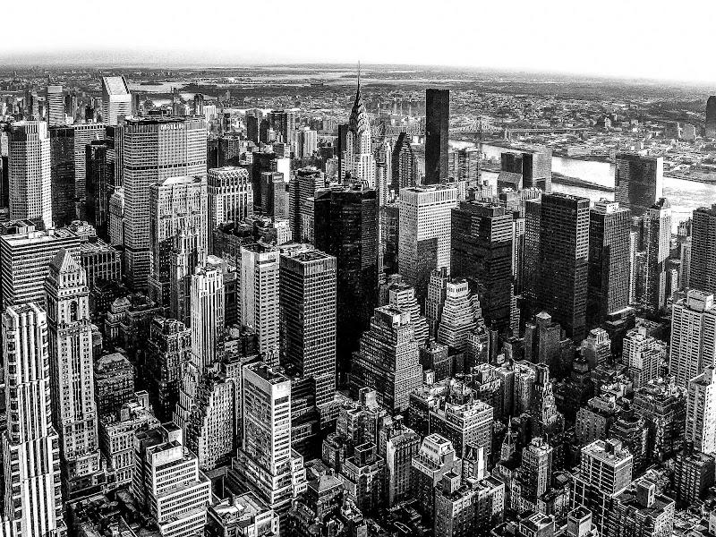 New York di Viola1
