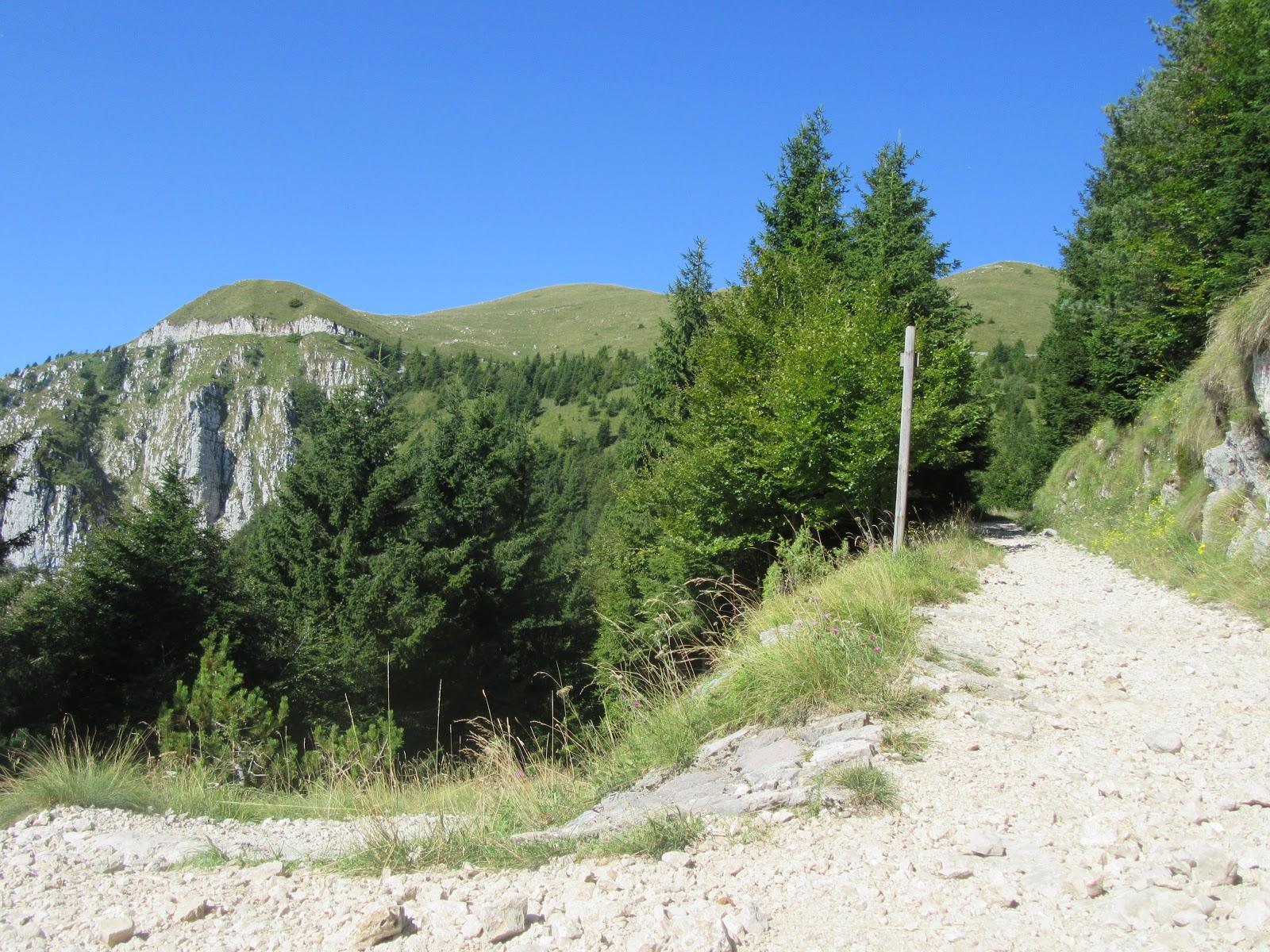 Climbing Monte Grappa from Crespano by bike - roadway cut into mountain