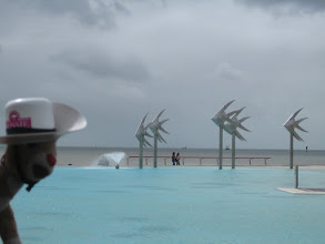 Photo: RRR and the public pool in Cairns.