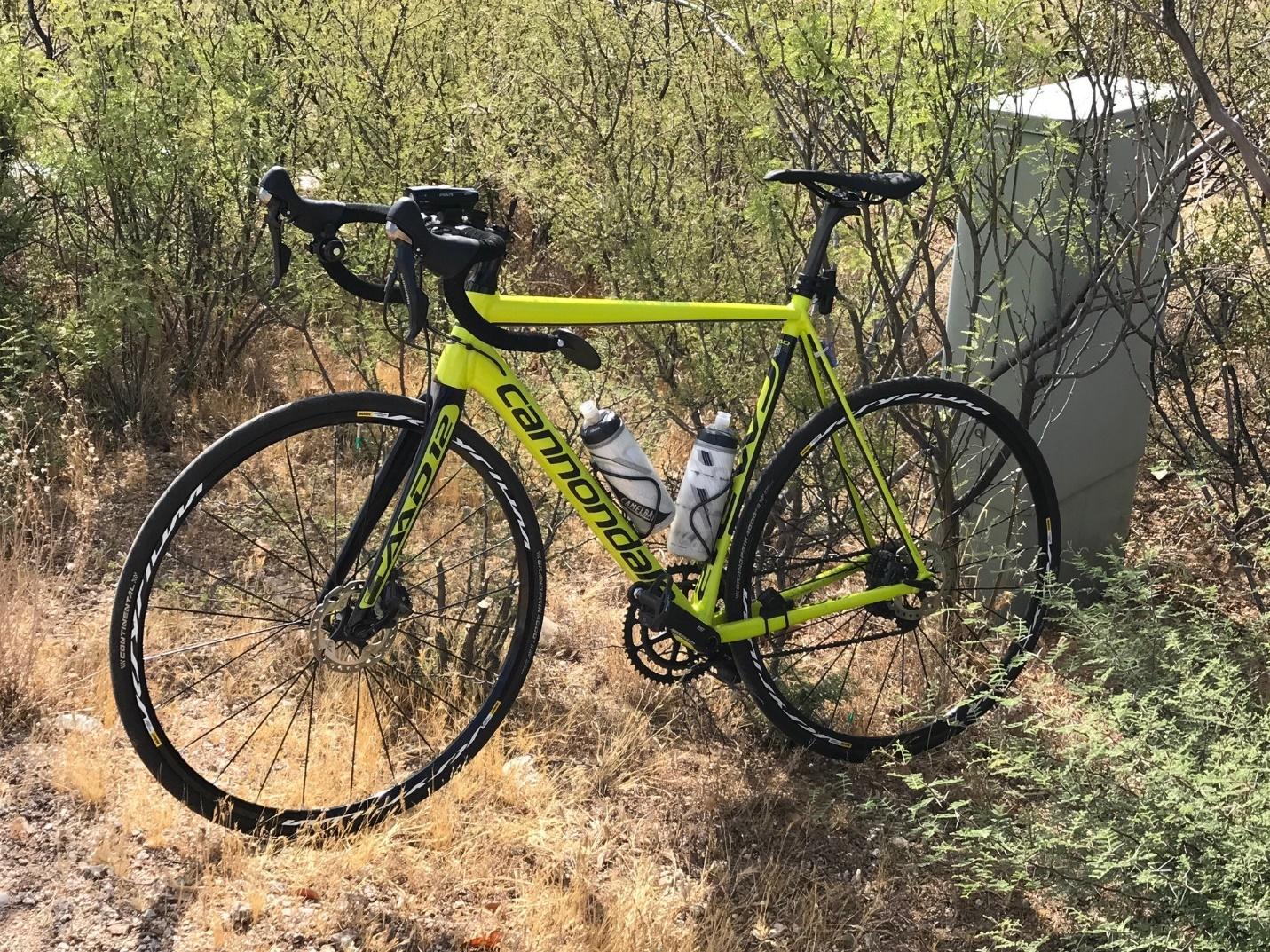Hi Viz Yellow and Black Cannondale Road Bike leaning against desert shrubs