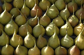 Photo: Pear