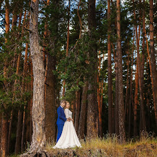 Wedding photographer Dmitriy Sergeev (DSergeev). Photo of 15.11.2017