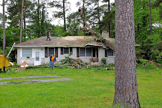 Photo: The tree cleanup is proceeding today, on Easter Sunday. This was snapped about an hour ago.