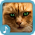 Meowing Cat Sounds file APK Free for PC, smart TV Download