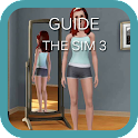 Guide for the Sims3 icon
