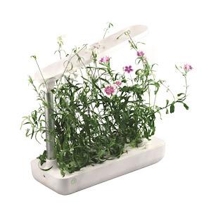 Gradina inteligenta pentru 9 plante, pompa de apa si iluminare LED 21W