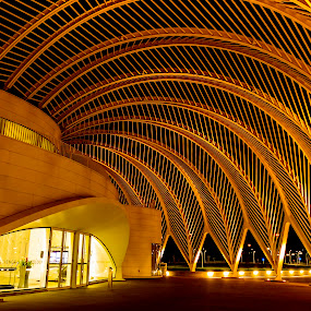 Poly Arch's by Ken Wagner - Buildings & Architecture Architectural Detail ( cool, schools, arch's, light, nightscape,  )