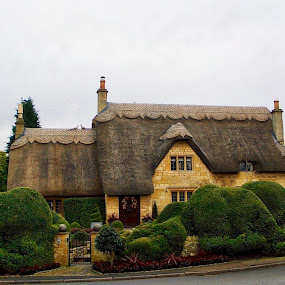 Thatch by Bryan Lowcay - Buildings & Architecture Homes (  )