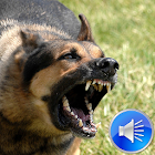 Dog Barking Sounds Ringtones icon
