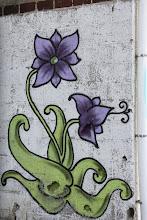 Photo: Day 8 - Canalside Graffitti #2