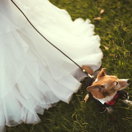 Fotógrafo de bodas Javier Lebrero (lebrero). Foto del 14.10.2017