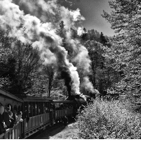 Rounding the bend by Cathleen Steele - Transportation Trains ( engine, smoke, monochrome, train, transportation )