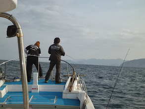 Photo: 「ミヨシ」でガンガンシャクって、お魚の活性を上げてます!