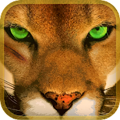 Wild Mountain Lion Simulator3D