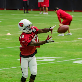 Cardinals Training Camp by Brent Dreyer - Sports & Fitness American and Canadian football ( wide receiver, football, training camp, cardinals, pass,  )